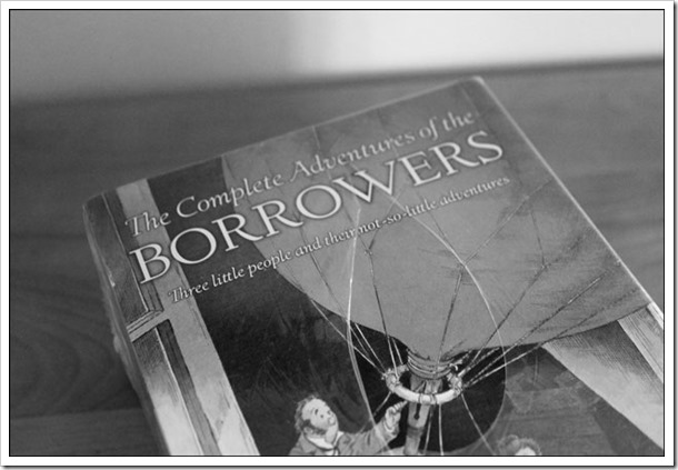 Borrowers Pic3