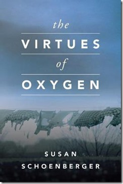 the-virtues-of-oxygen