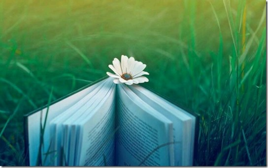 book-and-flower